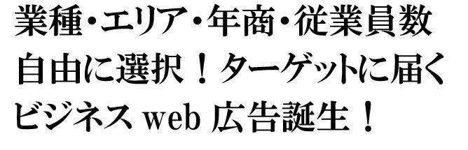 ターゲットビジネスweb広告